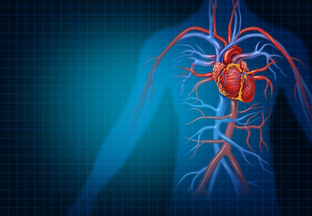 HOW TO PREVENT AND TREAT CARDIOVASCULAR DISEASES