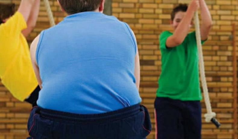 Obesity Levels Level Off – good or bad news?